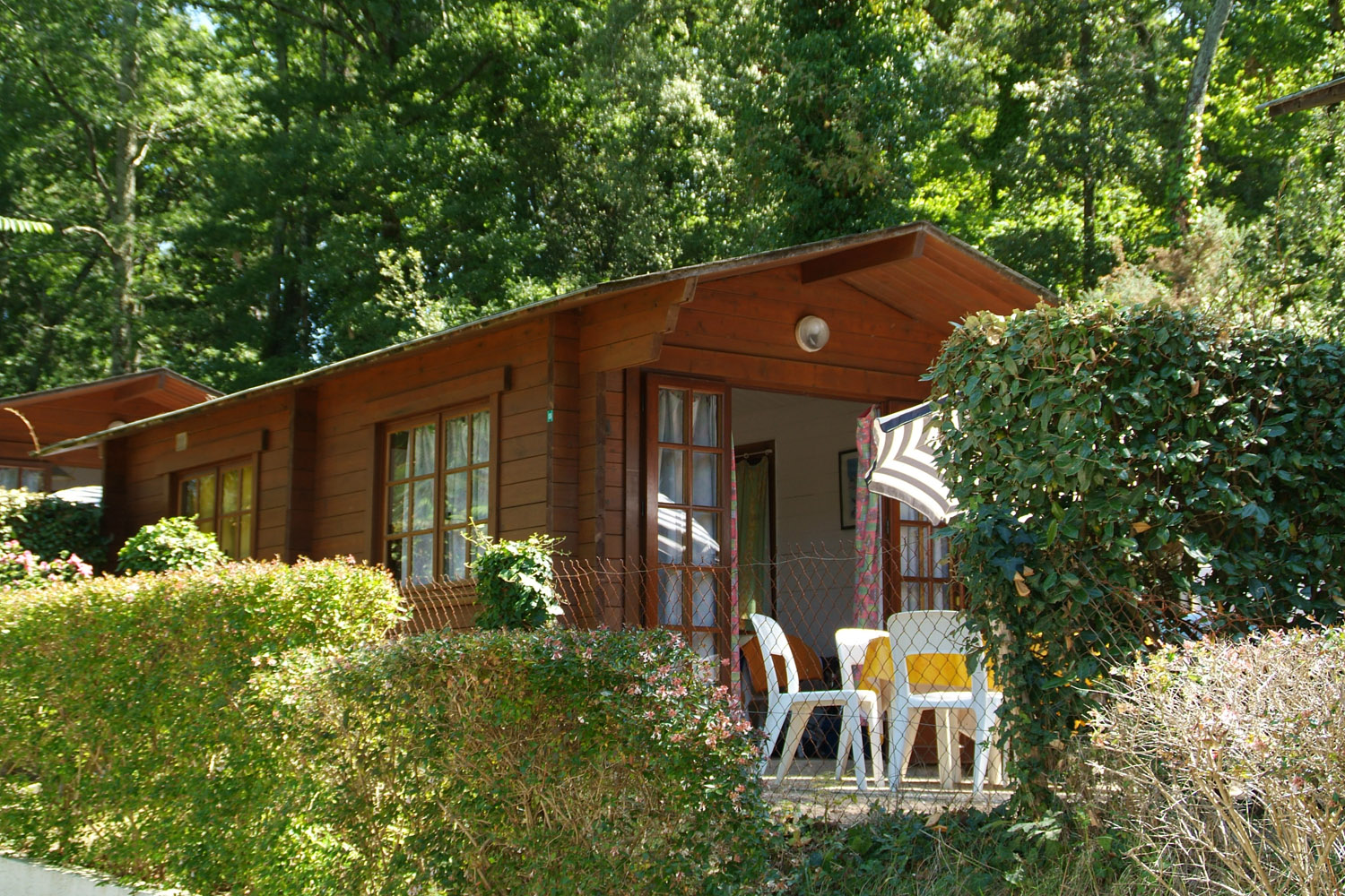 Chalet rental 4 people - Campsite in Charente-Maritime