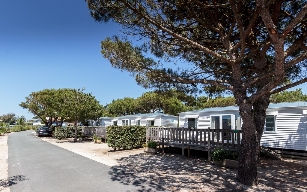 Mobile home with 3 bedrooms near beach - Camping à Saint Georges de Didonne, Charente-Maritime