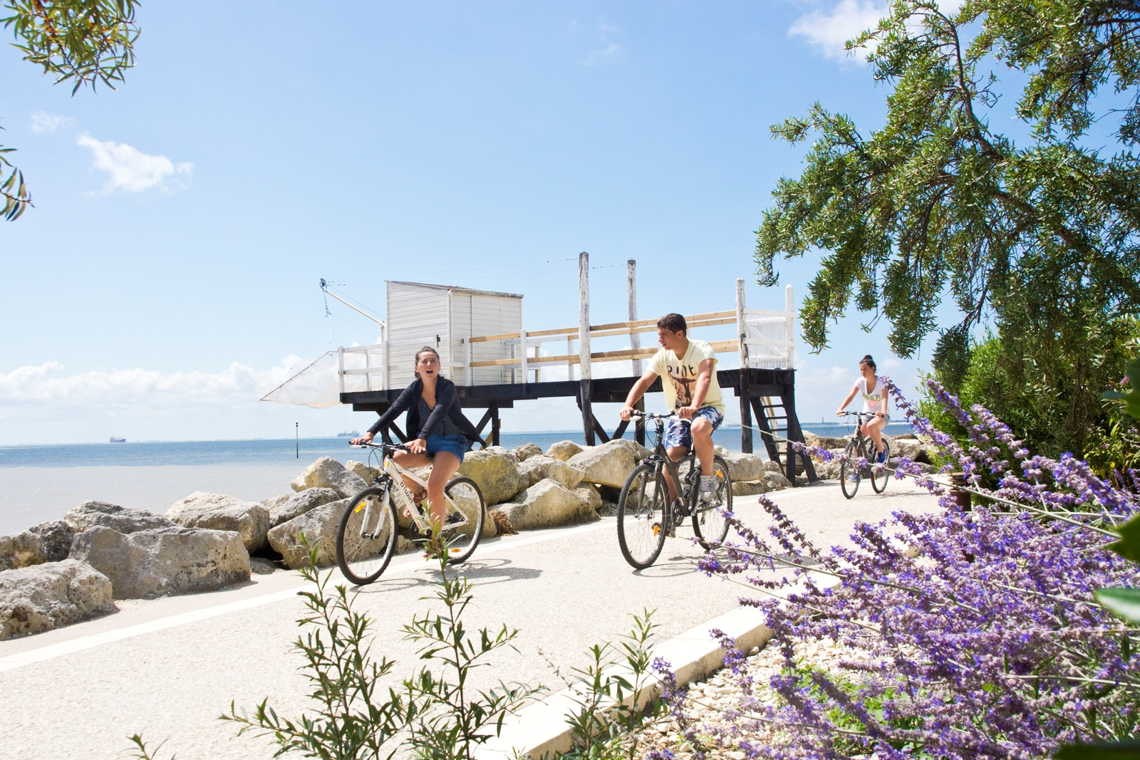 Walks and cycling near 5-star campsite Bois Soleil, beachfront campsite mobile homes, studios, camping pitches near Royan in Charente-Maritime