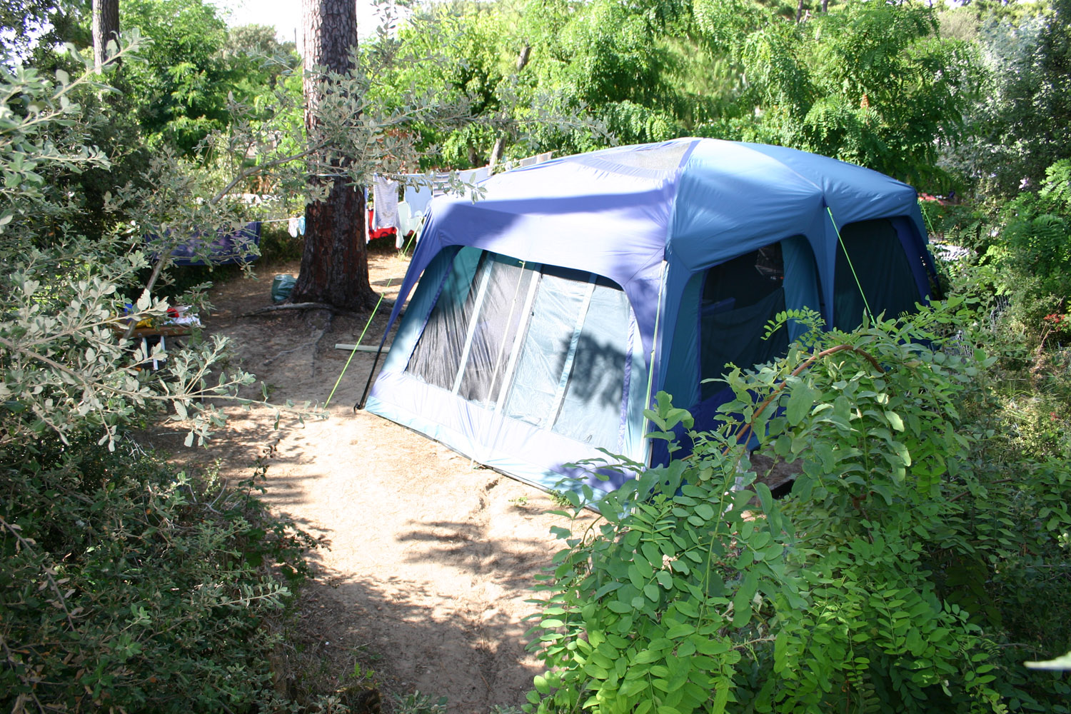 Tent pitch - camping in nature by the sea in Charente-Maritime